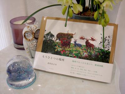 kiyokawa-asami-5.JPG
